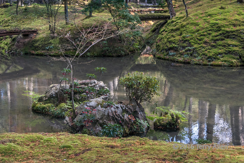 The garden at Saiho-ji (moss temple) in the fall, Kyoto, Japan