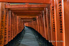 Torii walkway with Shinto priest, Fushimi Inari Taisha Shinto shrine, Kyoto, Japan