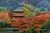 Taisan-ji pagoda with red maples