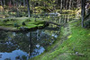 Moss temple in the fall with pond, bridge and reflections, Saiho-ji, Kyoto, Japan