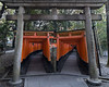 Double colonnade of torii gates leading up Inari Mountain at Fushimi Inari Taisha Shinto Shrine, Kyoto, Japan