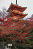 Pagoda with red maple leaves, Kiyomizudera Buddhist temple, Kyoto, Japan