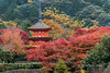 Pagoda with red maples, Kiyomizudera, Kyoto, Japan