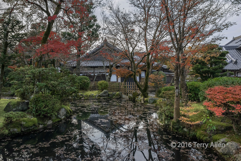 Pavilion and pond with fall leaves and reflections, Kiyomizudera, Kyoto Japan