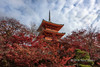 Red pagoda with autumn leaves, Kiyomizu Dera, Kyoto, Japan