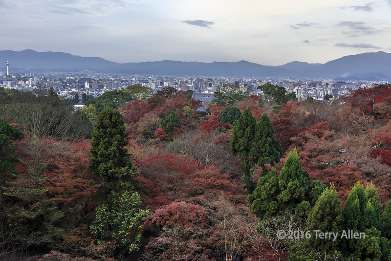View from Otowa-san over the fall vegetation to Kyoto city, Japan