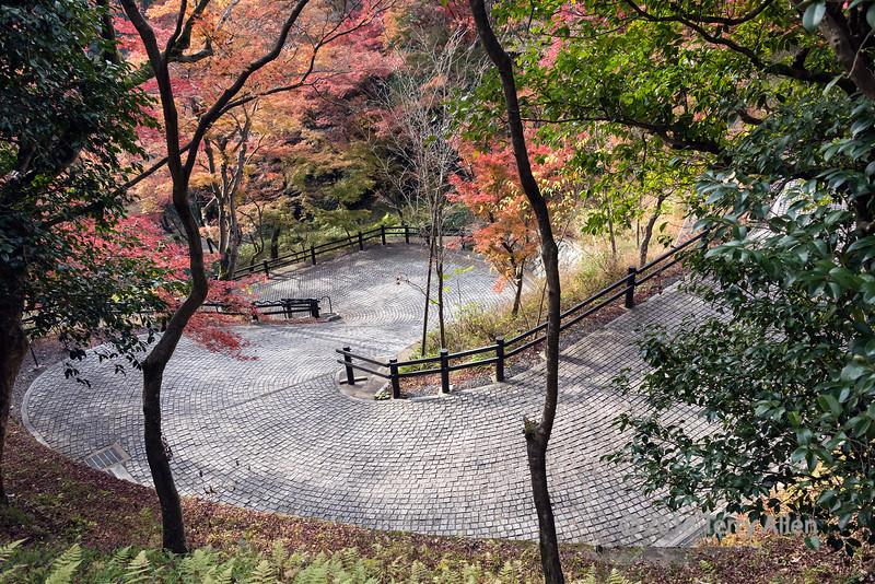 Cobblestone path through the fall colours, Kiyomizu Dera, Kyoto, Japan