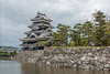 Matsumoto Castle (Black Crow) and moat with pine trees, Nagano, Japan