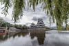 Matsumoto Castle and willow leaves, Nagano, Japan