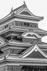 Close-up Matsumoto Castle with pigeons BW, Nagano, Japan