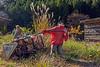 Kakashi man pulling a sled full of kakashi children, Nagoro Doll Village, Iya Valley