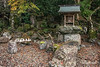 Small temple in the garden of Jinguji Buddhist temple with fallen leaves, Kamiyama, Japan, one of the few shrine-temples still extant.<br /> <br /> In Japan, Shinto shrines and Buddhist temples used to be a single place of worship until Meiji era (1868-1912) when the emperor decided to separate them and Shinto became the official religion of Japan.<br /> <br /> During the Asuka period in which Buddhism was first transmitted to Japan, Shinto and Buddhism had not yet integrated with one another, but in the Heian period when Buddhism began to diffuse throughout the nation, a certain degree of friction arose between the new beliefs and the ancient Japanese Shinto religion and out of this rose a syncretism of Shinto and Buddhism in which Shinto kami were considered to be the temporary forms of Buddhist deities. This led to the construction of Shinto shrines within Buddhist temples in which to enshrine the temporary kami forms (gongen) that Buddhist deities were believed to assumed.