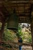 Ringing the bell at Kamiichinomiya Oawa Shinto Shrine, Kamiyama, Shikoku Island, Japan
