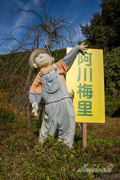 Kakashi (scarecrow doll), Kamiyama, Tokushima, Shikoku Island, Japan