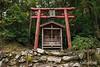 Small shrine with torii gate, Kamiichinomiya Oawa Shinto Shrine, Kamiyama, Shikoku Island, Japan