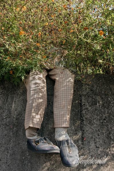 Kakashi doll hiding on a wall, Kamiyama, Tokushima, Shikoku Island, Japan