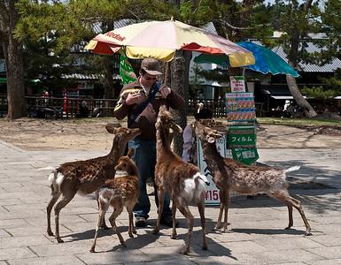 Japan - Nara 2009
