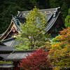 2012_Oct_Nikko_ITT-257