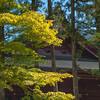 2012_Oct_Nikko_ITT-134