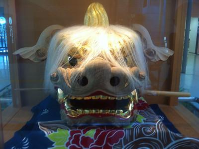 Cool drangon's head on display