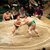 2013_Japan_Sumo-11