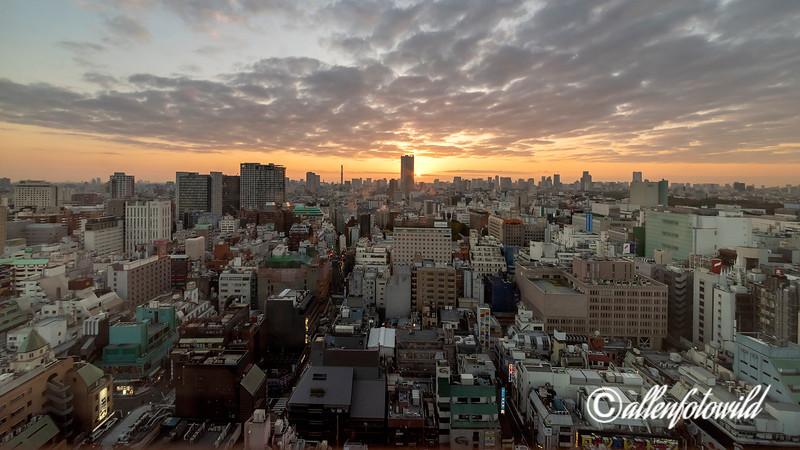 Shinjuku at sunrise, Tokyo, Japan