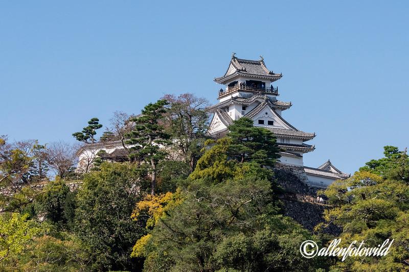 Kochi Castle (1611)  one of only 12 intact vastles in Japan, Kochi, Shikoku Island, Japan