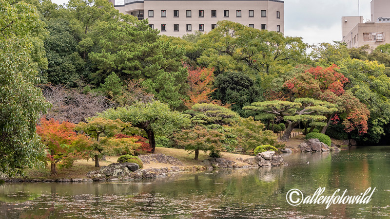 Gun'ochi pond with fall colours, formerly used by the Shogun for duck hunting, Titsurin Garden, Takamatsu, Japan
