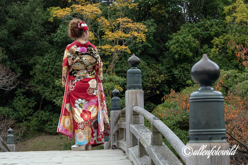 Colourful fall leaves and beautiful kimono