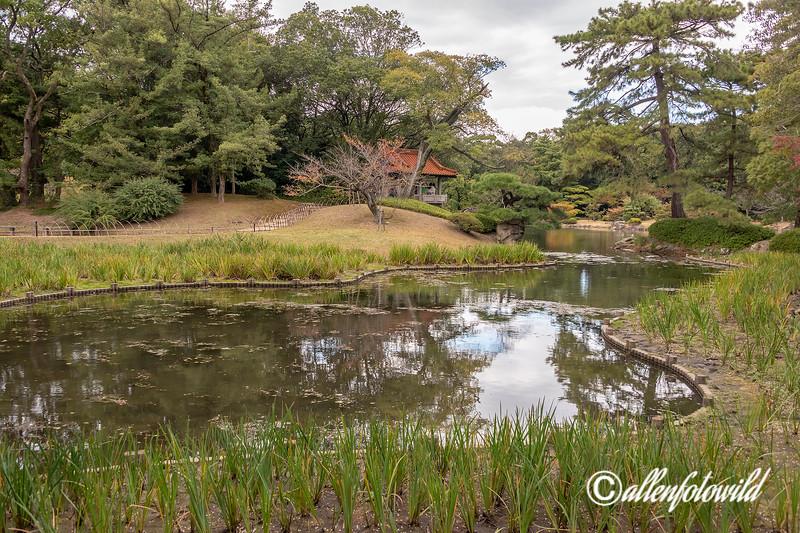 Kan'okaku Gazebo with Iris beds, overlooking Gun'ochi Pond, Ritsurin Garden, Takamatsu, Japan