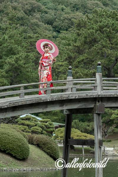 Young woman in kimono crossing the Geishun-kyo Bridge, Ritsurin Garden, Takamatsu, Japan