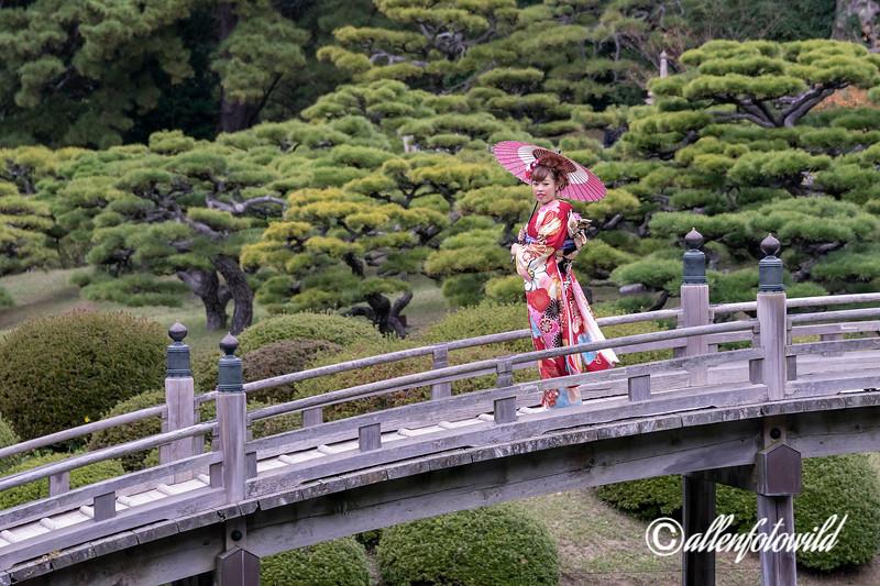 Young woman in beautiful kimono and obi on the Geishun-kyo Bridge, Ritsurin Garden, Takamatsu, Japan