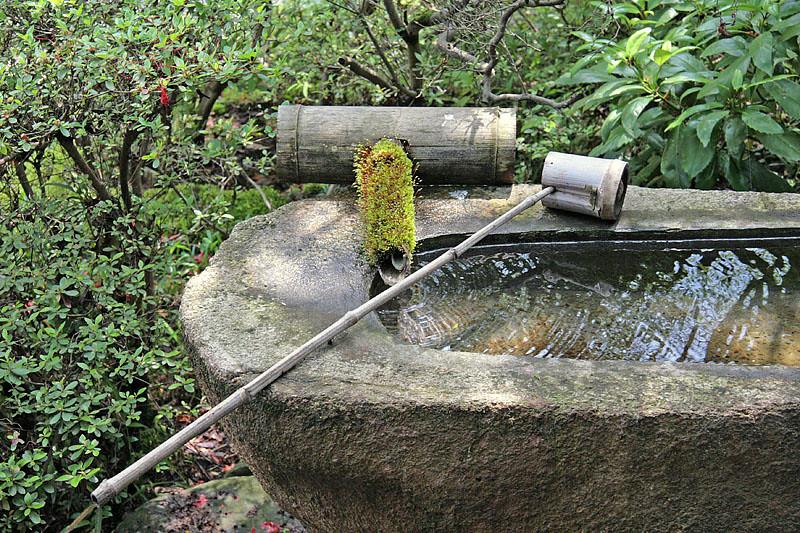 Fresh Water Basin