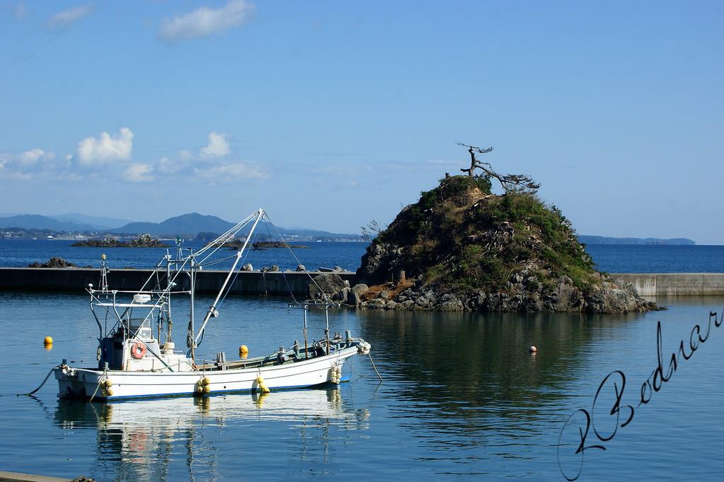 Photo By Bob Bodnar........................................Northern Pacific Coast of Japan, near Kesennuma