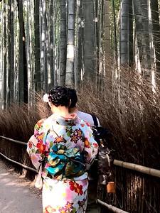 Beautiful in kimono