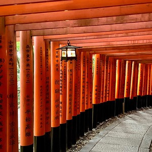 Thousand torii gates 千本鳥居