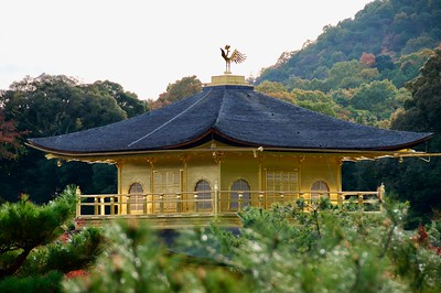 Golden Pavilion's rooftop