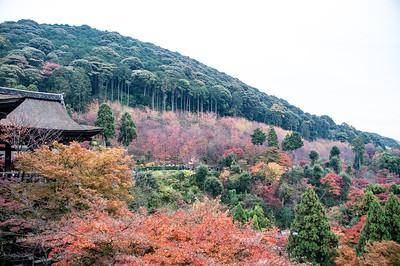 Fall season at Kiyomizudera, Kyoto