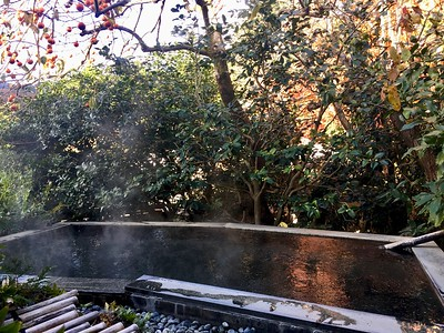 Outdoor bath under persimmon tree