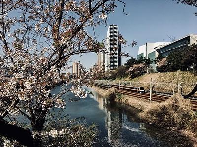 Spring 2018, Ichigaya