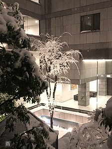 Courtyard covered in snow, Ichigaya