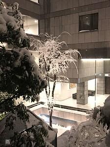 Courtyard covered in snow, Ichigaya