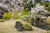 The Koishikawa Kōrakuen Gardens in Bunkyo, Tokyo, Japan.