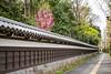 A long fence surrounding the Koishikawa Kōrakuen Gardens in Bunkyo, Tokyo, Japan.