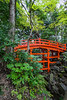 A red bridge at the Koishikawa Kōrakuen Gardens in Bunkyo, Tokyo, Japan.