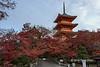 Pagoda with red maple leaves, Kiyomizudera Buddhist temple, horizontal, Kyoto, Japan