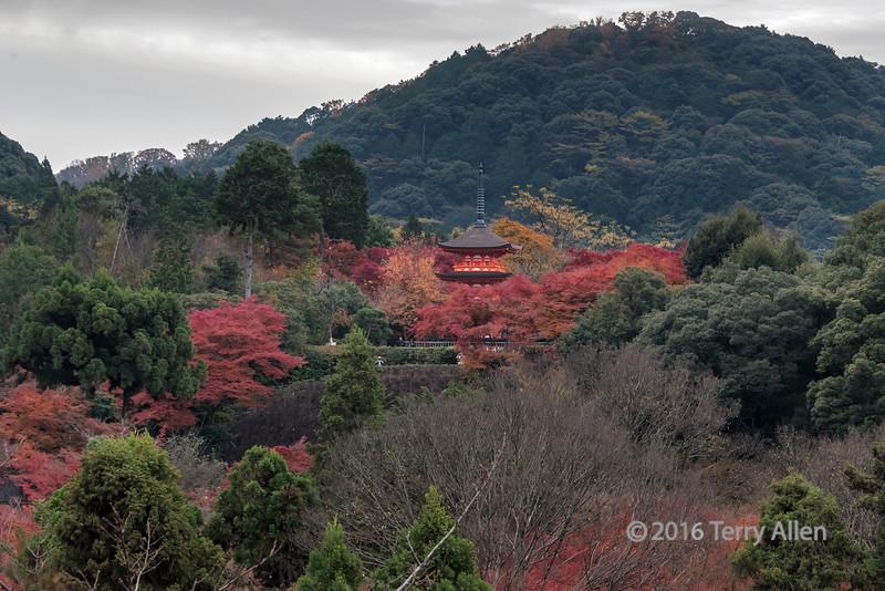 Taisan-ji pagoda nestled amount the fall leaves, Kiyomizudera, Kyoto, Japan