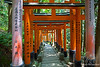 Fushimi Inari Torii Gates with Japanese messages~steps going down