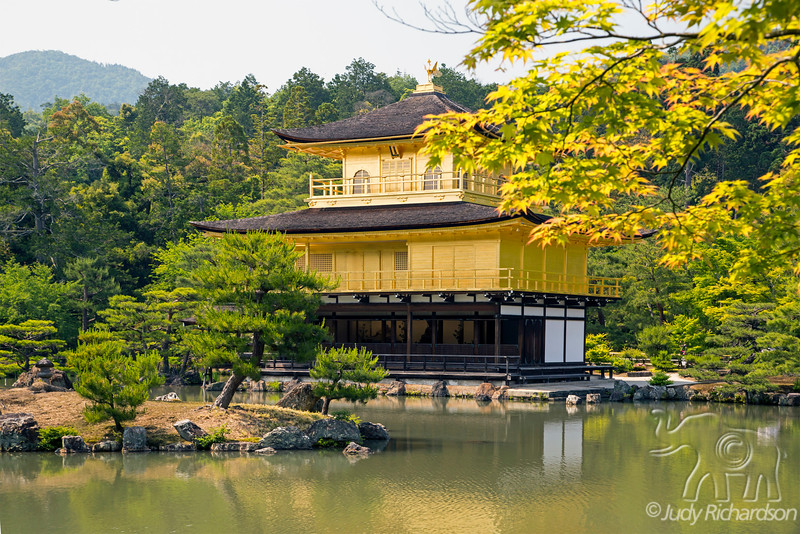 Golden Temple~Zen Buddhist temple in Kyoto