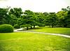 Gardens, I, Palace of the Shogun, Kyoto, Japan